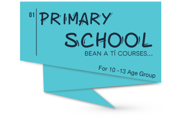 Primary School Courses