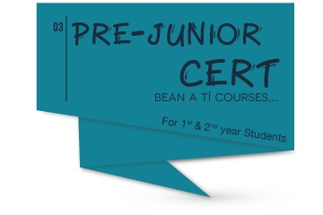 Pre-Junior Certificate Irish Course