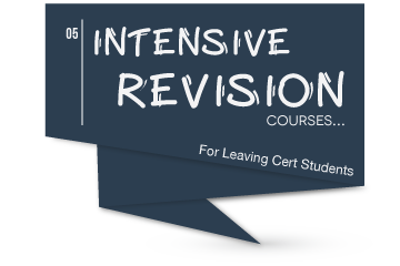 Intensive Revision Irish Course