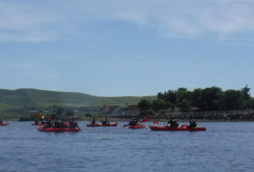 kayaking-dingle-harbour